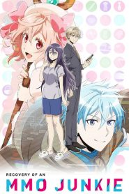 Recovery of an MMO Junkie 2017