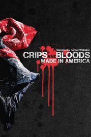 Crips and Bloods: Made in America 2008