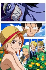 One Piece Episode of Nami: Tears of a Navigator and the Bonds of Friends 2013