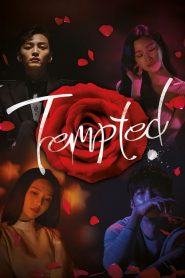 Tempted 2018