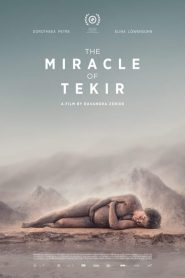 The Miracle of Tekir 2015